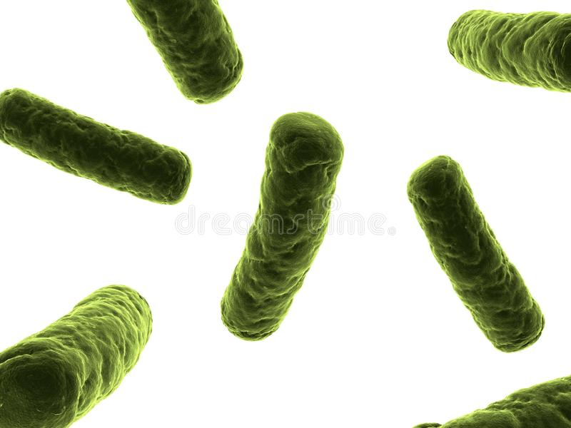 Bacteria Illustration Stock Photos