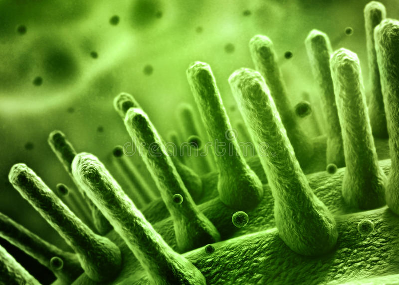 Bacteria SEM concept stock illustration