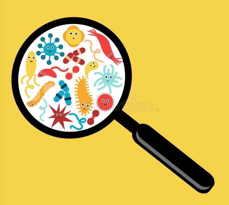 Bacteria and Viruses vector illustration