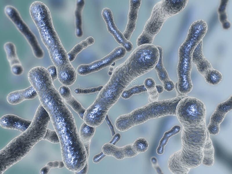 Bacterias libre illustration