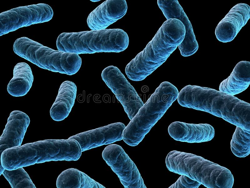 Bacterias libre illustration