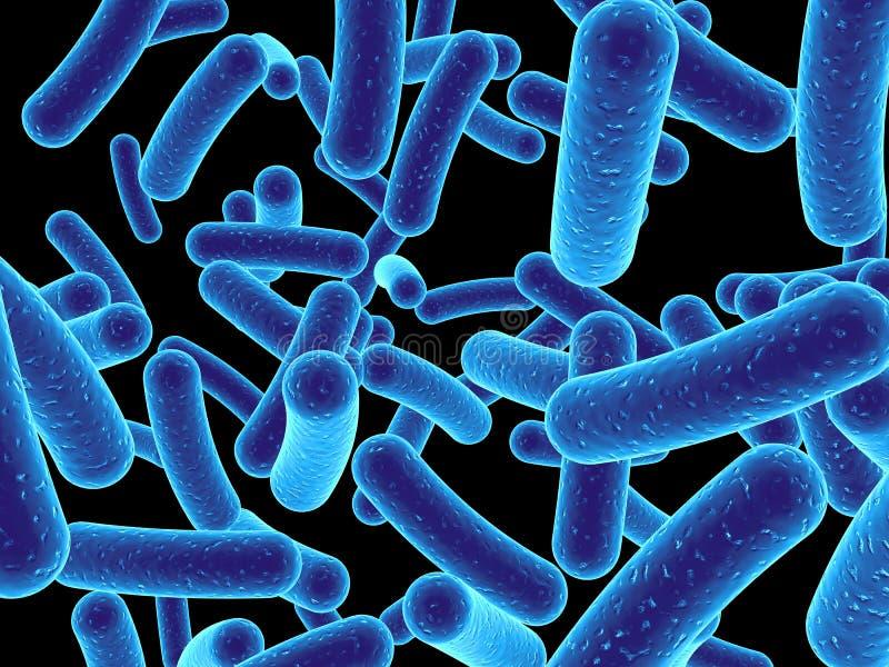 Bacterias ilustración del vector