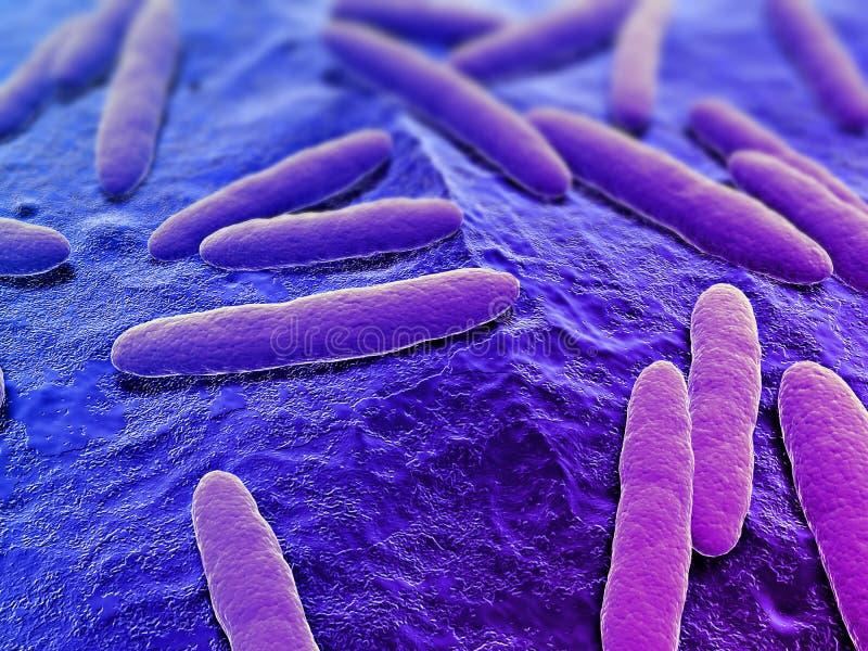 bacterias 3d libre illustration