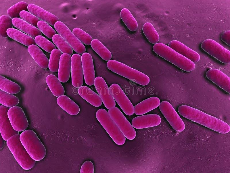bacterias 3d stock de ilustración