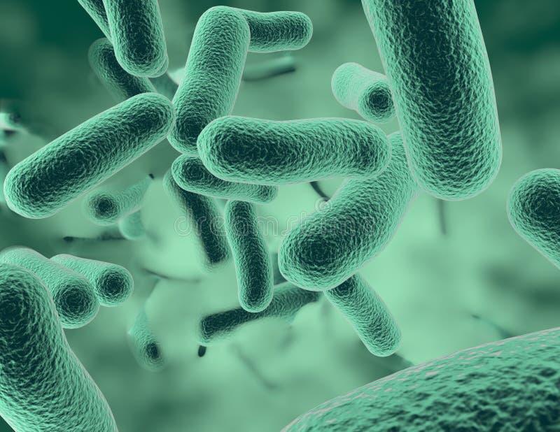 Bacterias 3D rendant l'illustration scientifique médicale de fond illustration stock