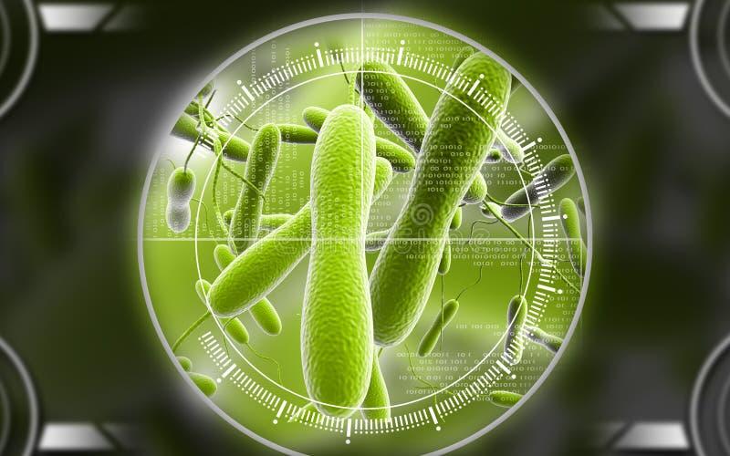 Bacterias del cólera stock de ilustración