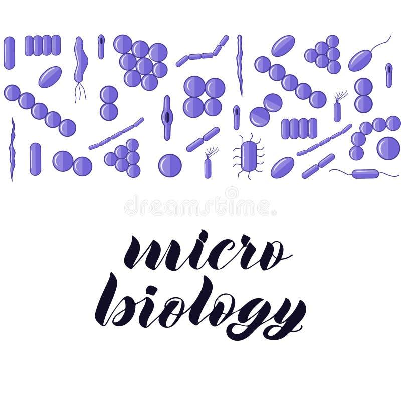 Bacterias púrpuras Letras micro de la mano de la biología libre illustration