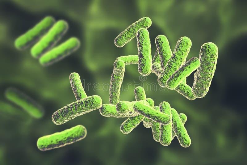 Bacterias patógenas humanas libre illustration