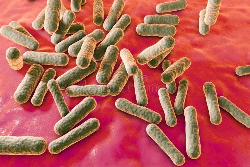 Bacterias que causan acné stock de ilustración