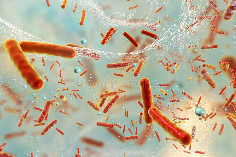 Bacterias resistentes de Multidrug dentro de un biofilm ilustración del vector