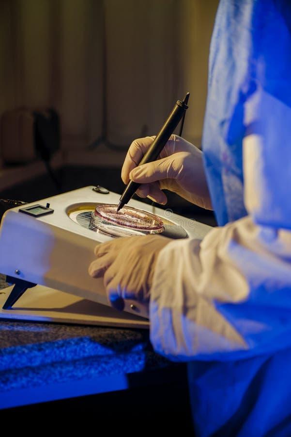 Bacteriological Testing stock photos
