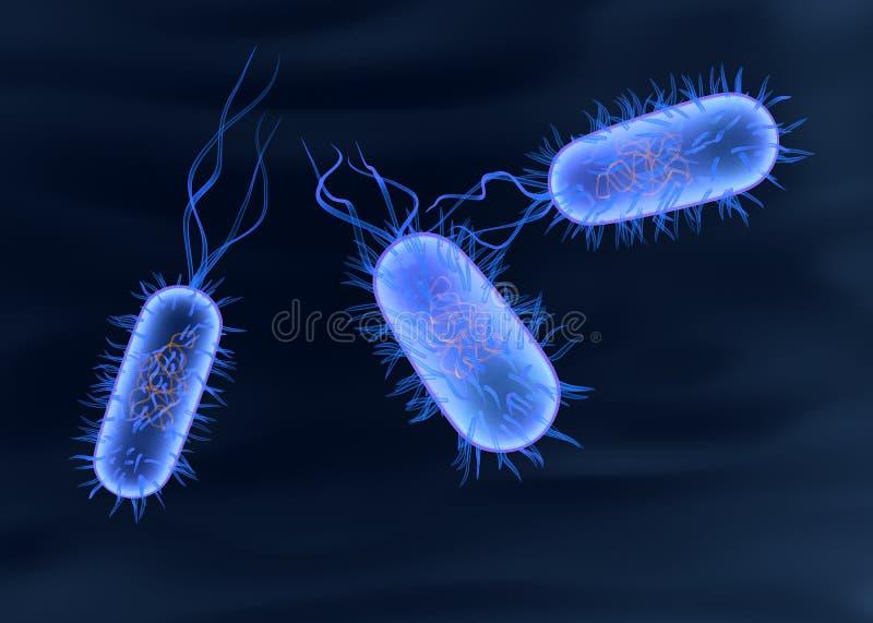 Bacterium royalty free illustration