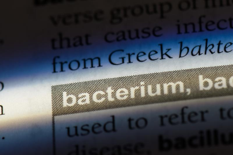 Bacterium. Word in a dictionary.  concept royalty free stock photography
