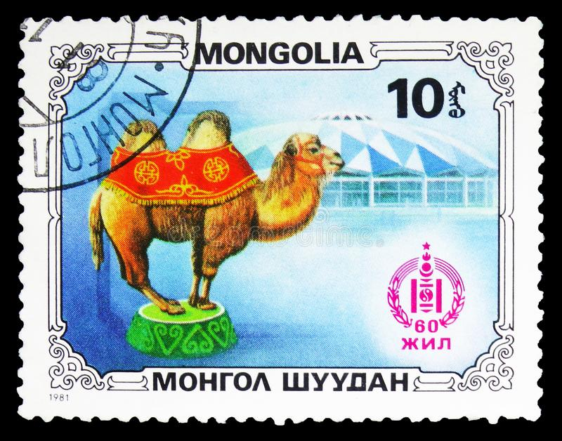 Bactrian Camel Camelus bactrianus and Circus Tent, Sport and culture serie, circa 1981. MOSCOW, RUSSIA - SEPTEMBER 26, 2018: A stamp printed in Mongolia shows stock image