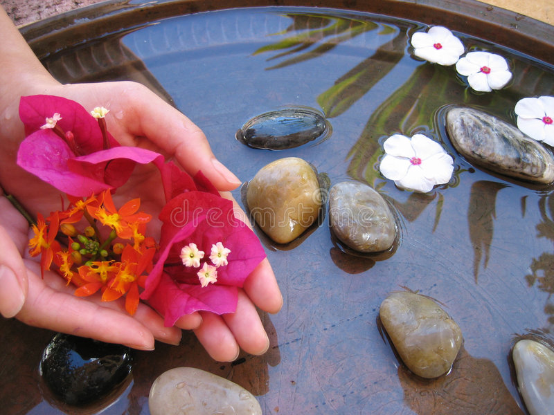 Bad 1 van de bloem stock foto