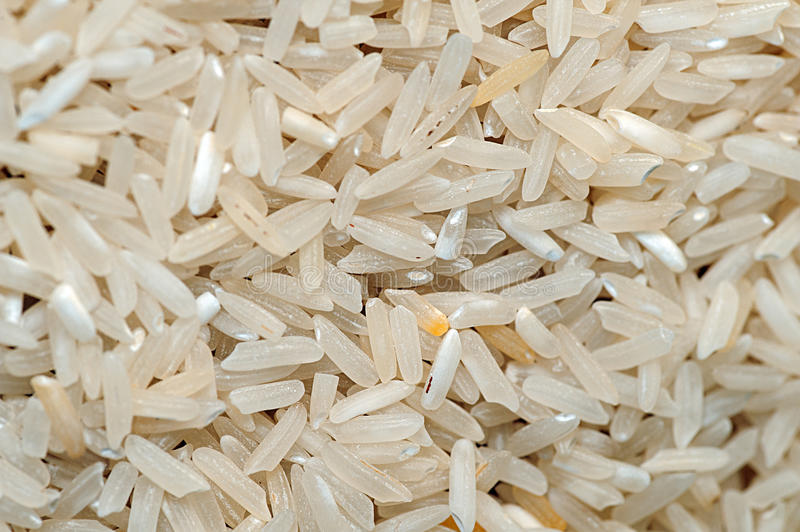 Bad dirty and low-quality rice. Close up stock photos