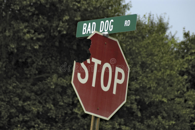 Download Bad Dog Road! stock image. Image of metal, canine, stop - 811049