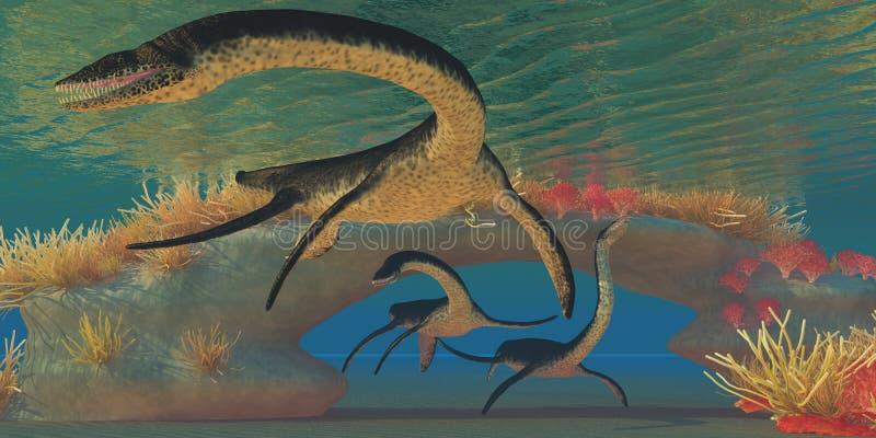 Plesiosaurushav stock illustrationer
