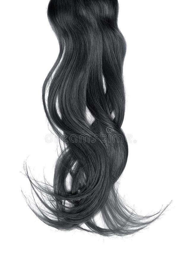 Bad hair day concept. Long, black, disheveled ponytail. Natural healthy hair isolated on white background. Detailed clipart for your collages and illustrations stock photography