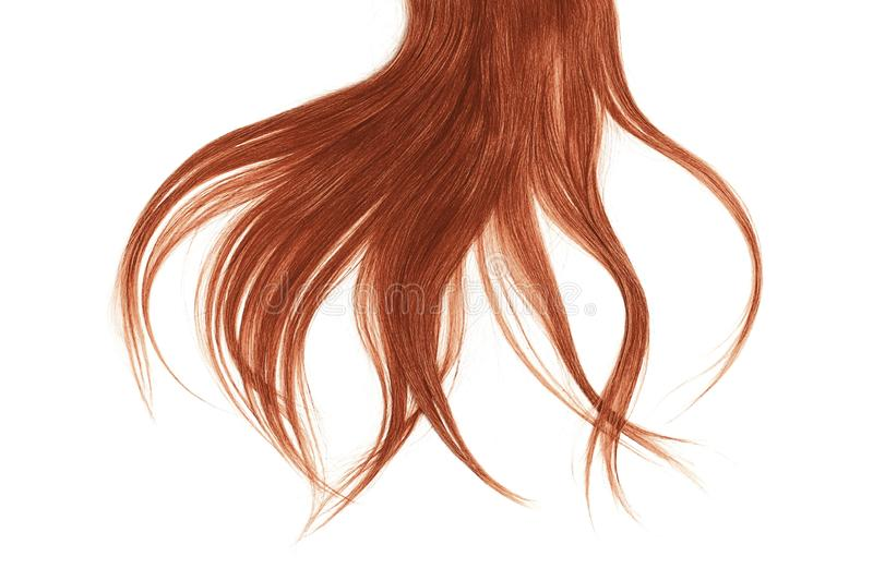 Bad hair day concept. Long, henna, disheveled ponytail. Natural healthy hair isolated on white background. Detailed clipart for your collages and illustrations stock photo