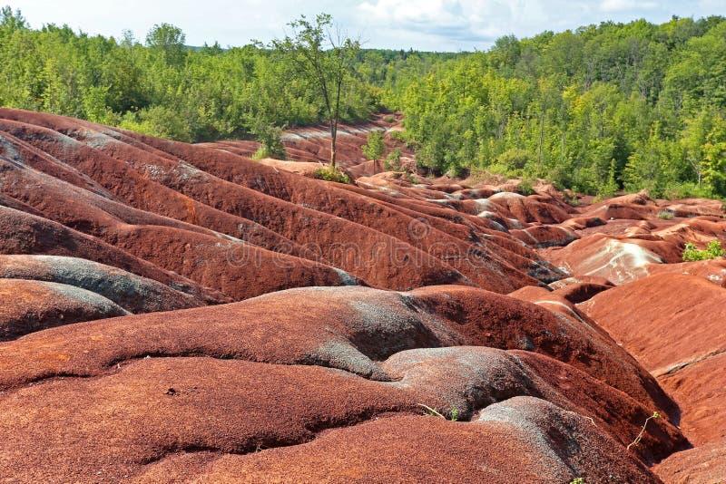 Bad-lands de Caledon dans Ontario image libre de droits