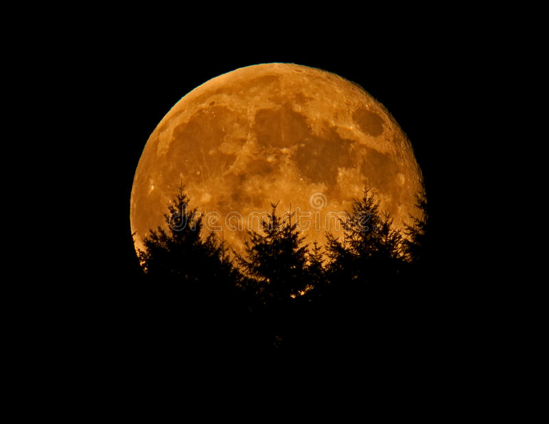 Bad Moon on the Rise. Sometimes the image of the Moon rising can appear clandestine, possibly hinting that trouble is imminent stock images