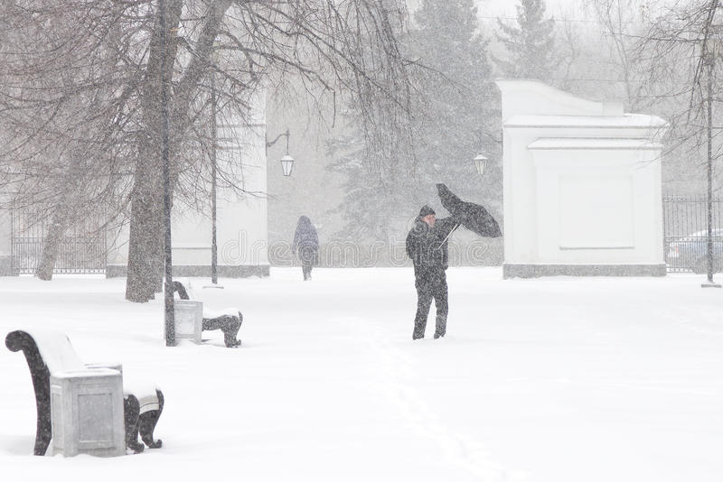 Bad weather in a city: a heavy snowfall and blizzard in winter. Unidentified male pedestrian hiding from the snow under umbrella. Heavy gust of wind tears the stock photo