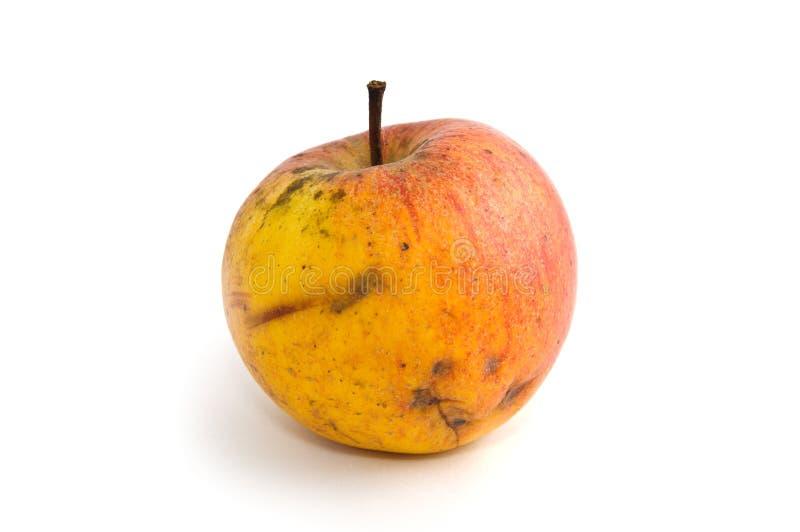 Bad yellow apple stock photography