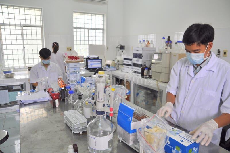 Badać ilość jedzenie i owoce morza dla eksporta w lab w Wietnam obrazy royalty free
