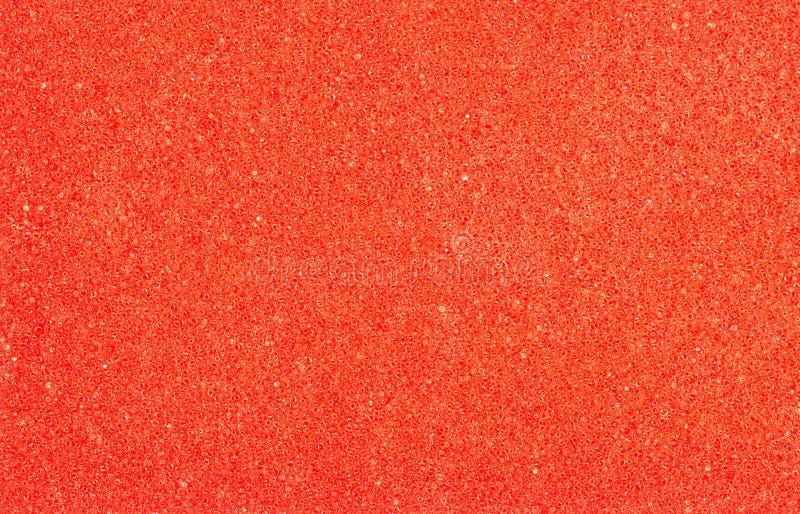 Bada svampcloseupen, röd abstrakt poriferous bakgrund arkivbild