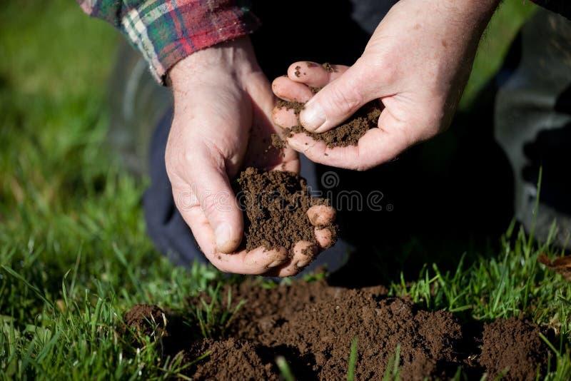 badania gleby obrazy royalty free