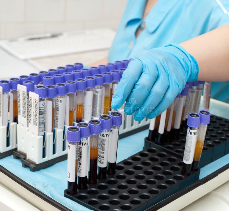 badanie krwi tubki obraz royalty free