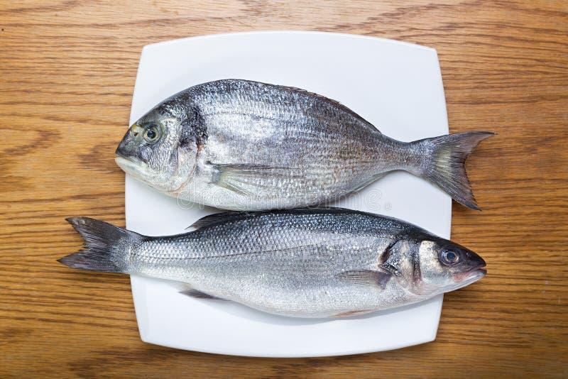 Badejo e dorado dos peixes imagem de stock