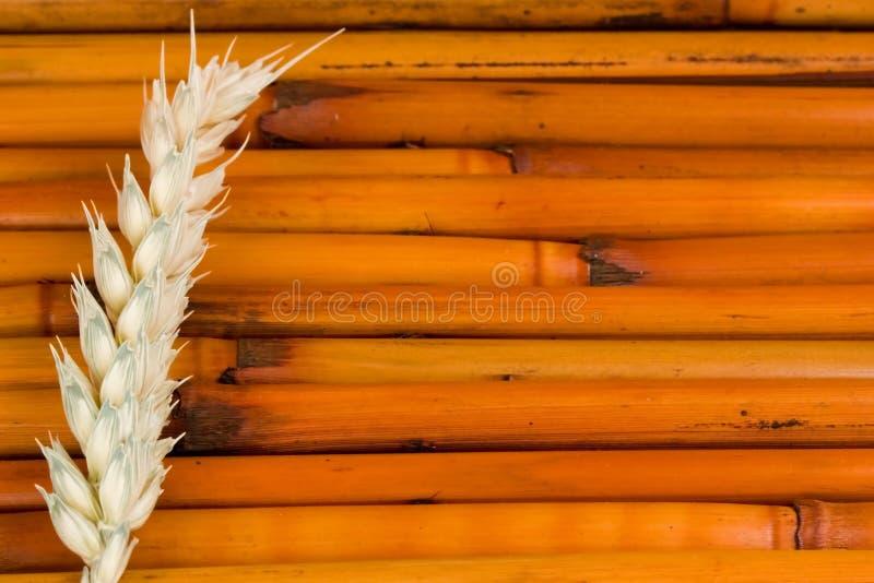 Badekurort-Hintergrund lizenzfreie stockfotografie