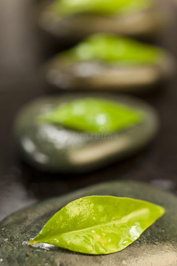 Badekurort-Massage-heiße Steine u. Grün-Blätter lizenzfreie stockfotografie