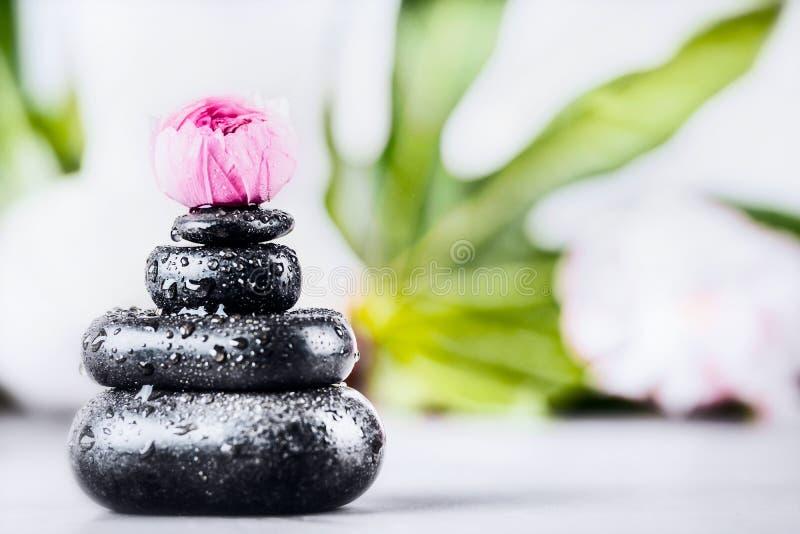 Badekurort oder Wellnesshintergrund mit Stapel heißen Steinen mit Wasser fällt für Massage und rosa Blume stockfotos