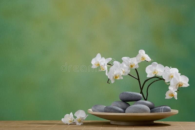 Badekurort-Steine mit Orchidee lizenzfreies stockfoto
