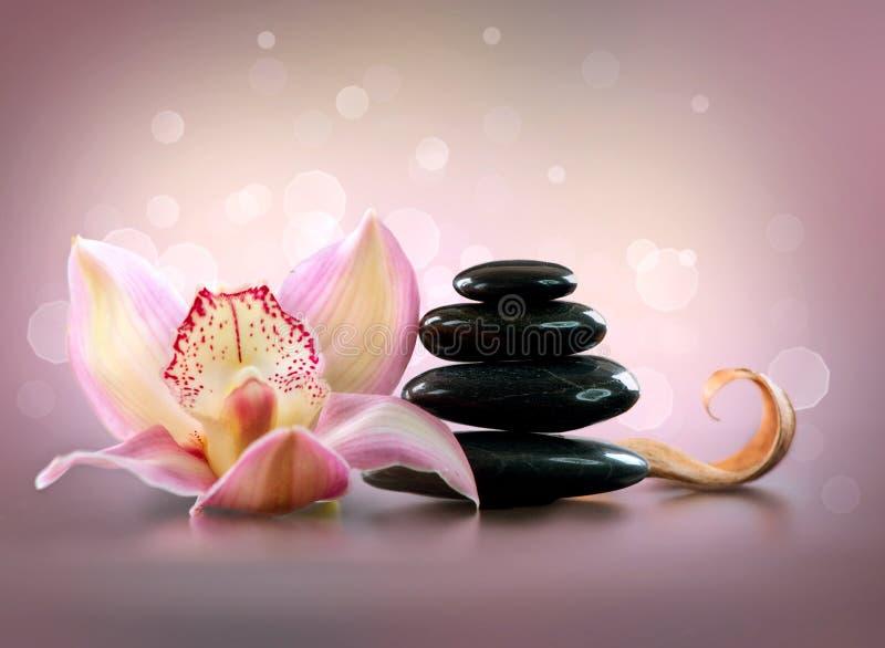 Badekurort-Steine und Orchideen-Blume lizenzfreies stockbild