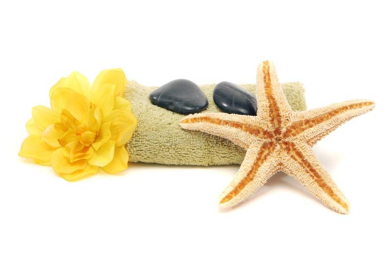 Badekurort Tuch, Felsen, Blume und Starfish lizenzfreie stockbilder