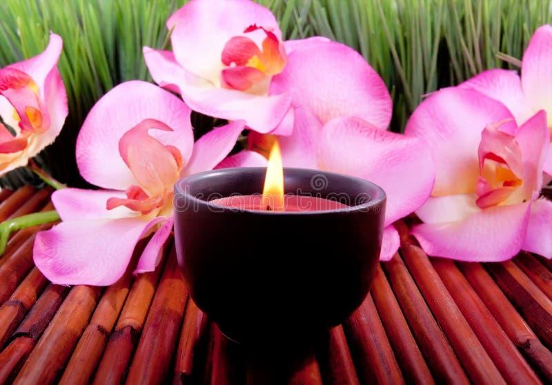 Badekurortkerze und -orchidee blühen für aromatherapy lizenzfreies stockbild