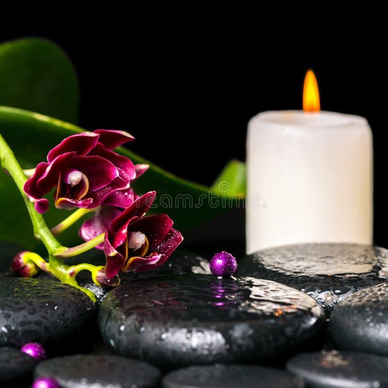 Badekurortkonzept der Blumenorchidee, Phalaenopsis, Kerze stockfotos