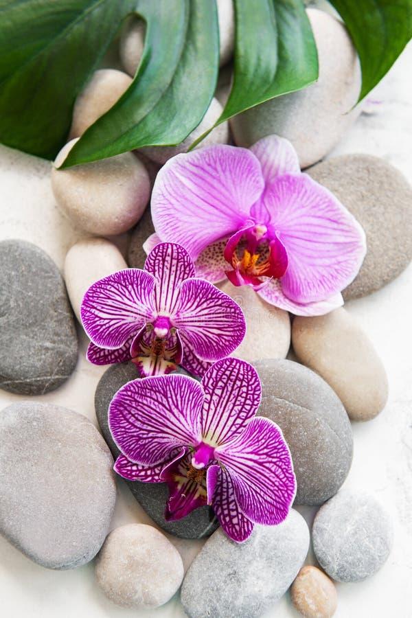 Badekurortsteine mit Orchideen lizenzfreie stockbilder