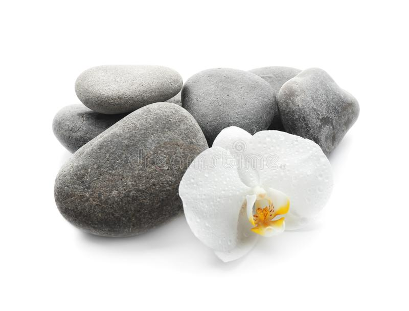 Badekurortsteine und schöne Orchideenblume auf weißem Hintergrund lizenzfreie stockfotografie