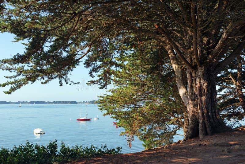 Baden coastal path royalty free stock images