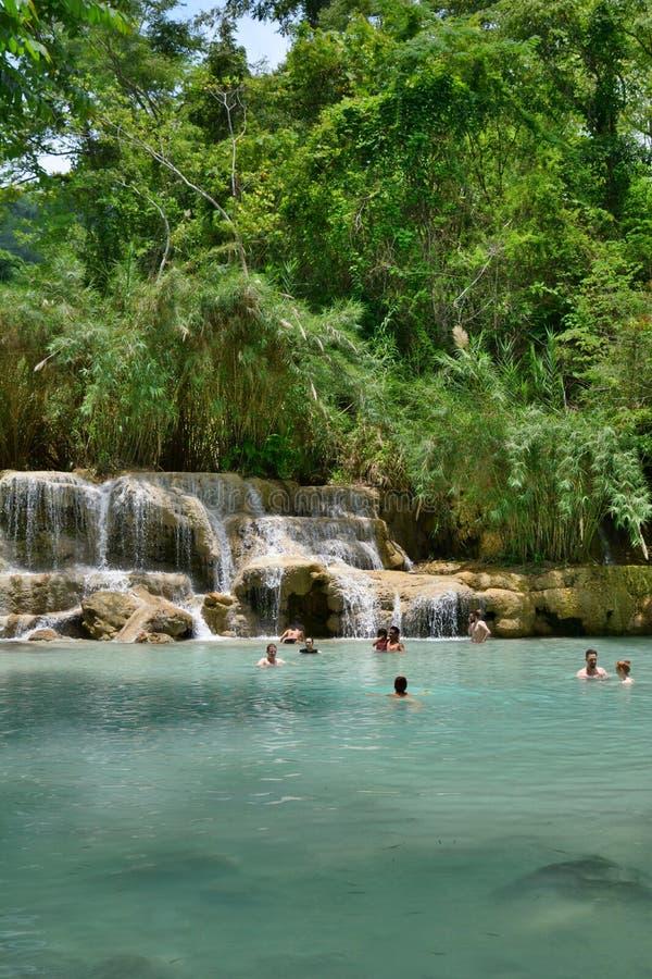 Badende pool Het park van de Kuangsiwaterval Luang Prabang laos stock afbeelding