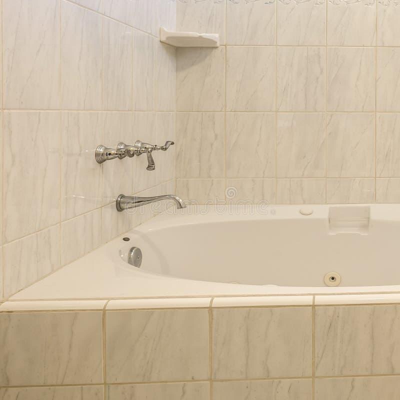 Badet badar med vattenkran- och tvålmaträtten på den vita tegelplattan royaltyfri bild