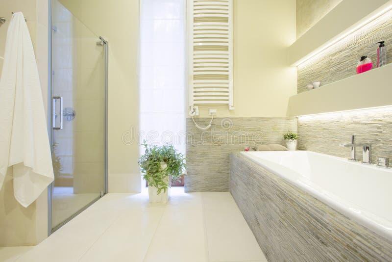 Badewanne und Dusche stockfoto