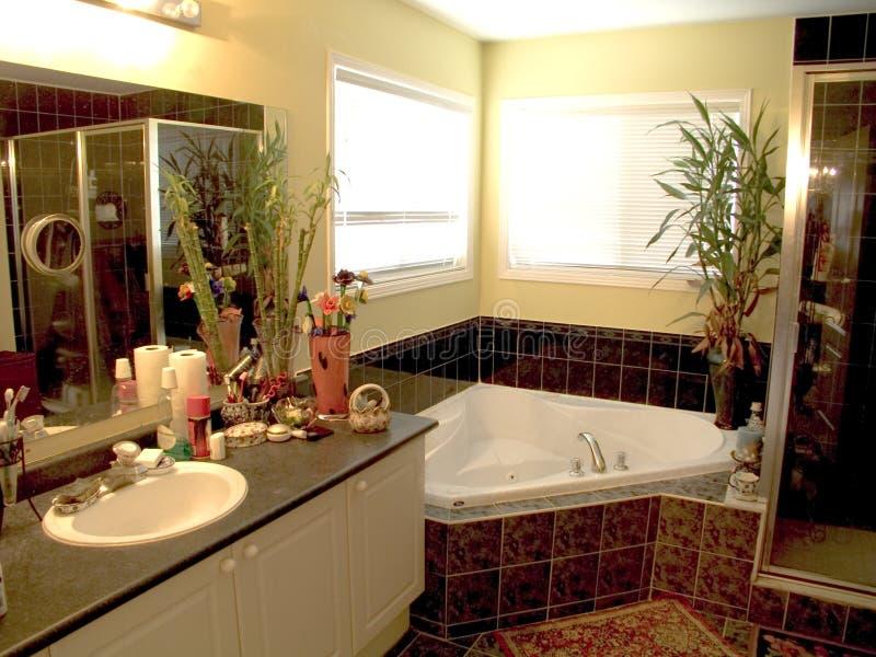 Badezimmer 14 lizenzfreies stockbild
