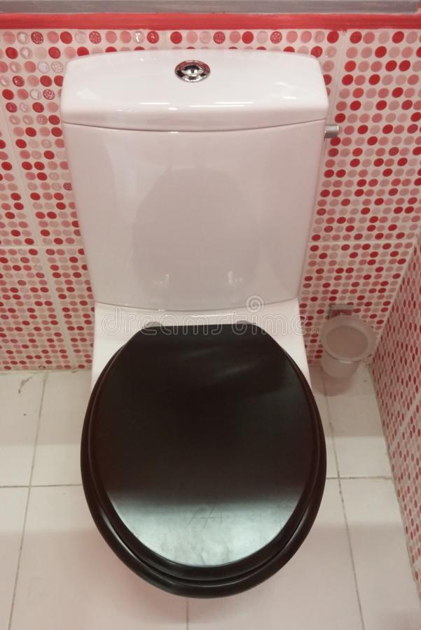 Badezimmertoilettenmodell lizenzfreie stockfotos