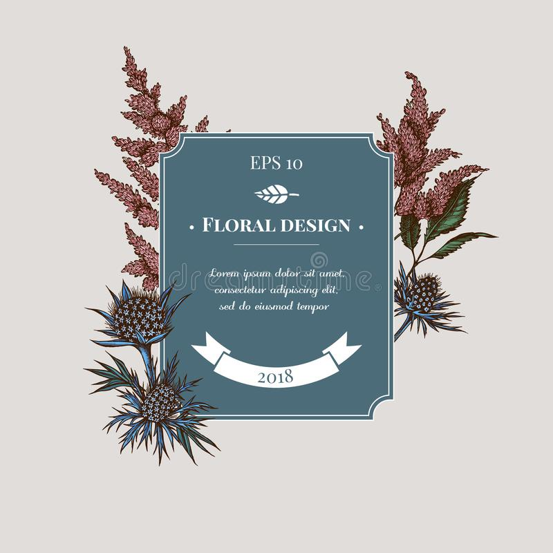 Badge design with colored astilbe, craspedia, blue eryngo. Stock illustration vector illustration